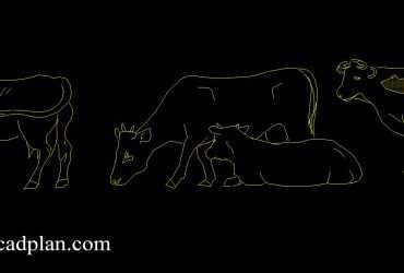 cow dwg cad block
