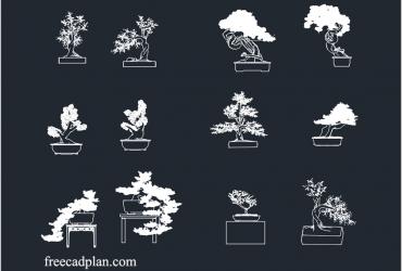 Bonsai tree dwg